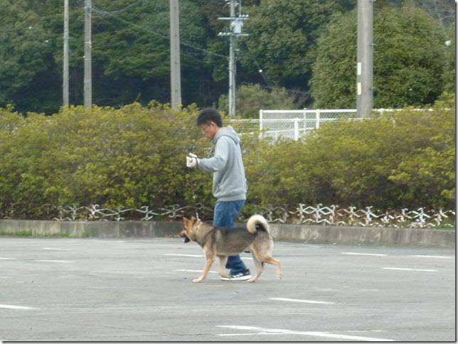 20170305歩様トレーニング-07