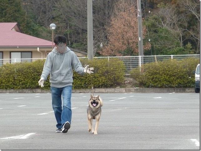 20170305歩様トレーニング-09
