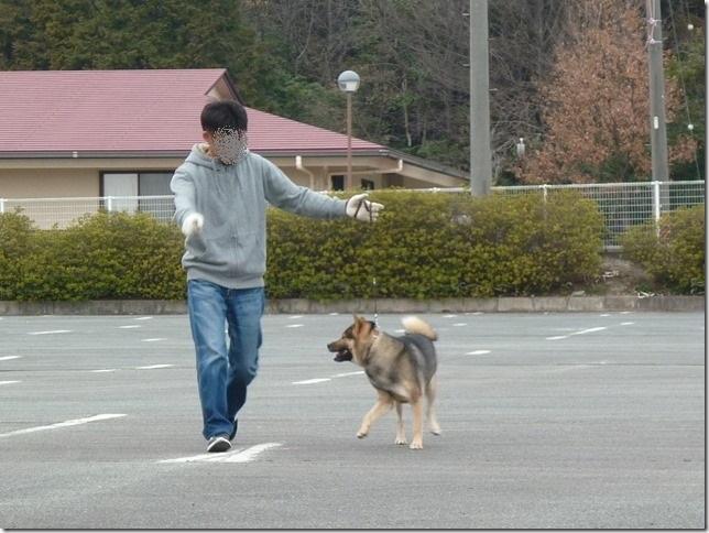 20170305歩様トレーニング-13
