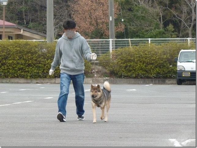 20170305歩様トレーニング-15
