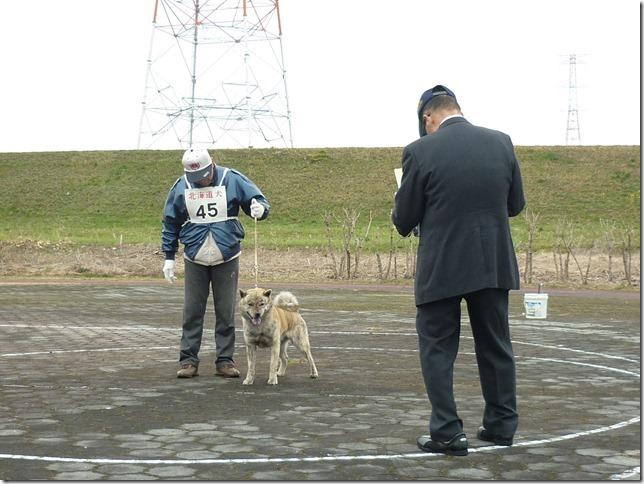 20170326NKC岐阜01-18