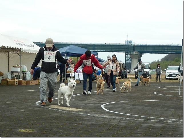 20170326NKC岐阜03-03