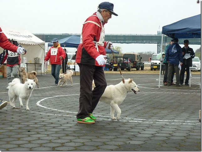20170326NKC岐阜03-21