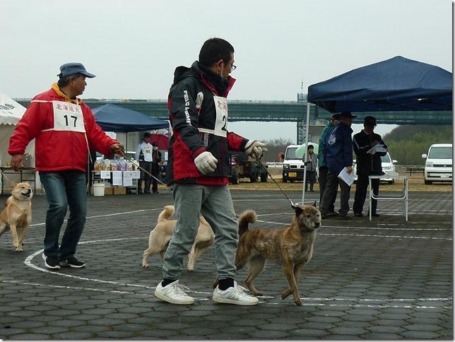 20170326NKC岐阜03-22