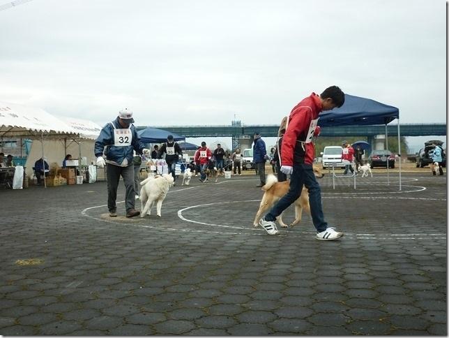 20170326NKC岐阜04-20