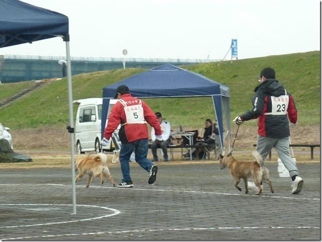 20170326NKC岐阜05-01