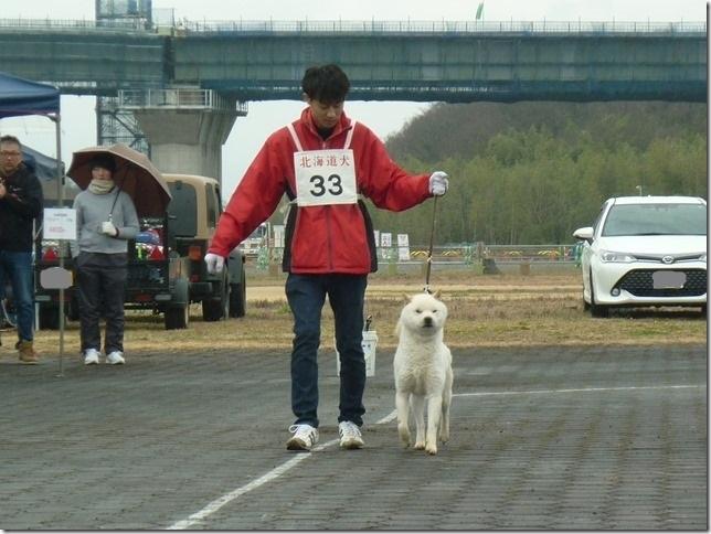 20170326NKC岐阜05-06