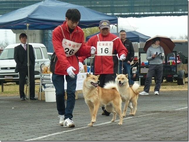 20170326NKC岐阜05-19