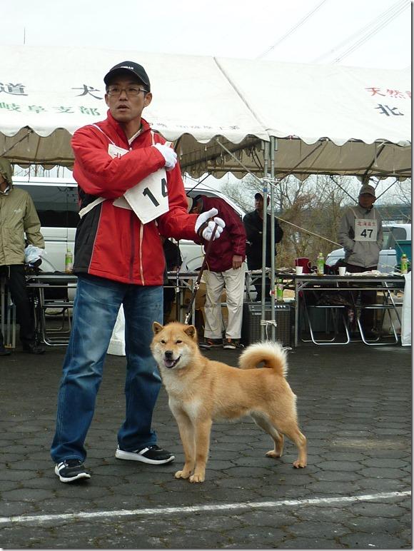 20170326NKC岐阜05-25