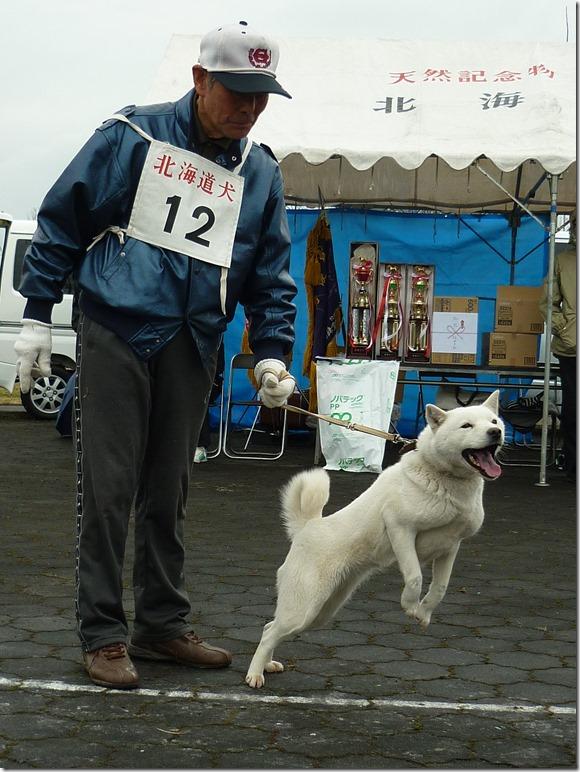 20170326NKC岐阜05-26