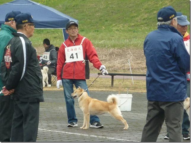 20170326NKC岐阜06-12