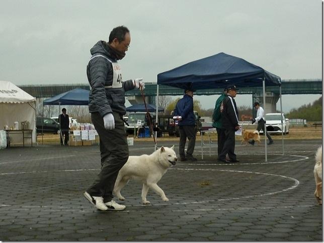 20170326NKC岐阜07-04