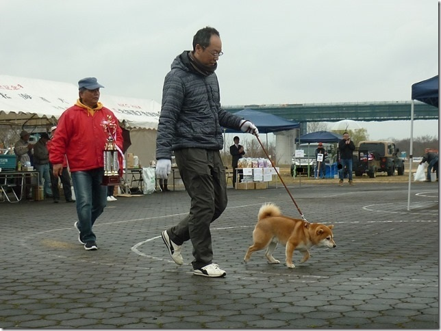 20170326NKC岐阜07-10