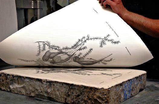 石版と印刷のありさま