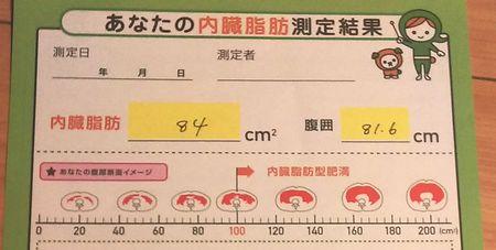 内臓脂肪1