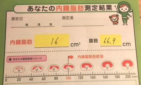 内臓脂肪2