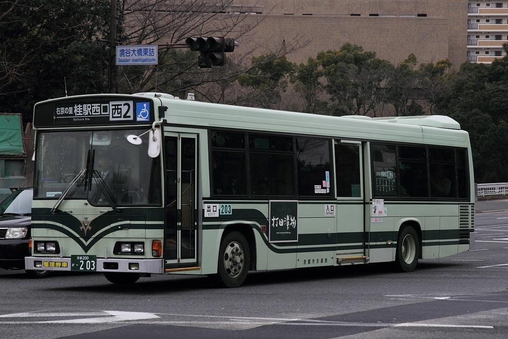 203.jpg