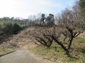 黒谷公園06