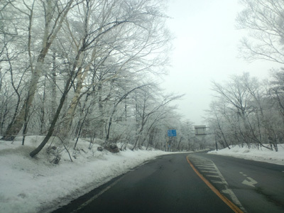 霧氷車窓から