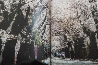 写真展 中筋純氏 5