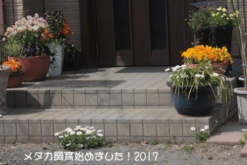 IMG_4893.jpg