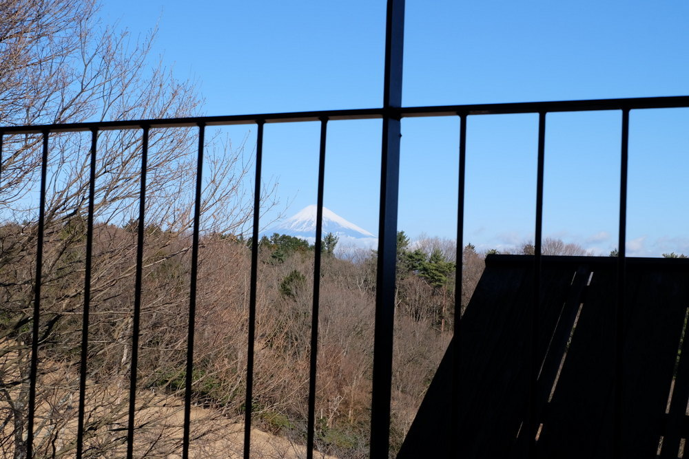 ラフォーレ修善寺2日目山紫水明富士山01