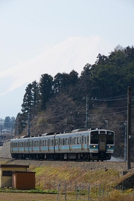 DSC_7950.jpg