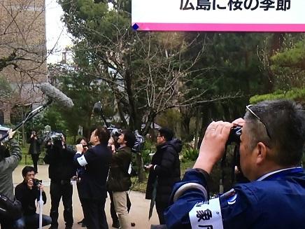 3272017 広島開花宣言S