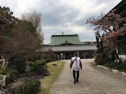 6番安楽寺本堂S3