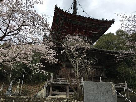 8番熊谷寺多宝塔S3