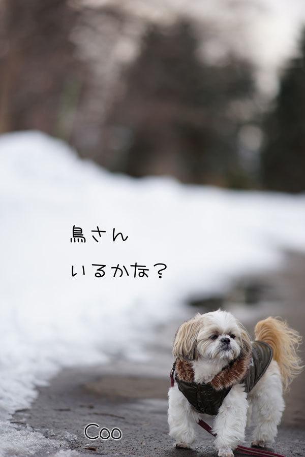 03-09_3134.jpg