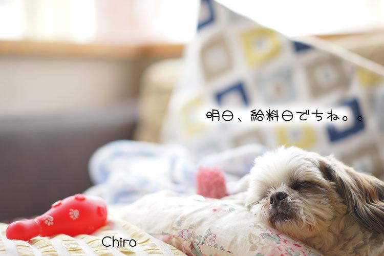 04-12_3770.jpg