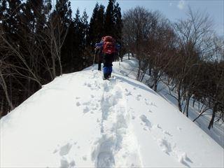 3.18熊鷹山 016_R