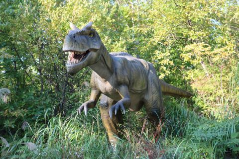 恐竜(1)