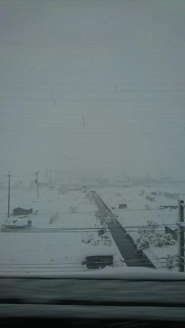 雪2(1)