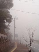 霧の霧島2