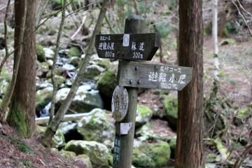 2017-04-20 iwautiwa 053