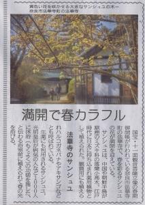 20170330奈良新聞_法華寺のサンシュユ