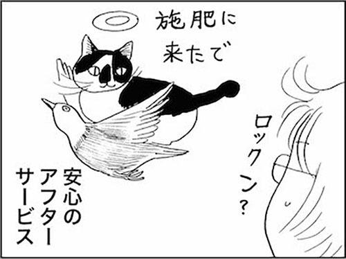 170220_kaigetuRock_sehi.jpg
