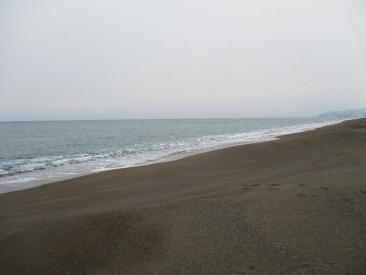 津軽海峡2010305