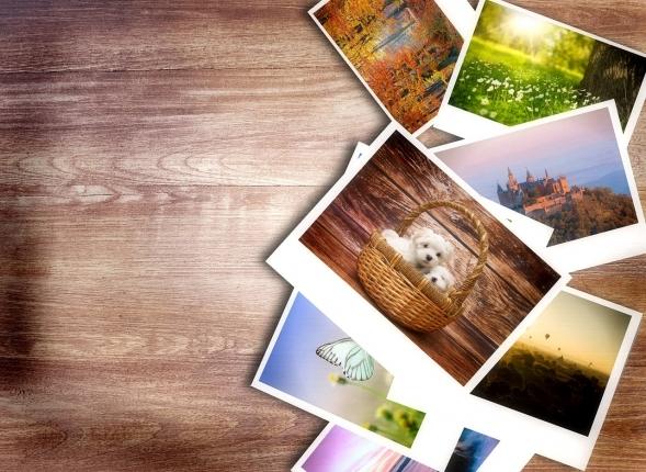 photos-1167847_1280.jpg