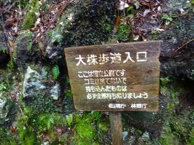 屋久 (468)