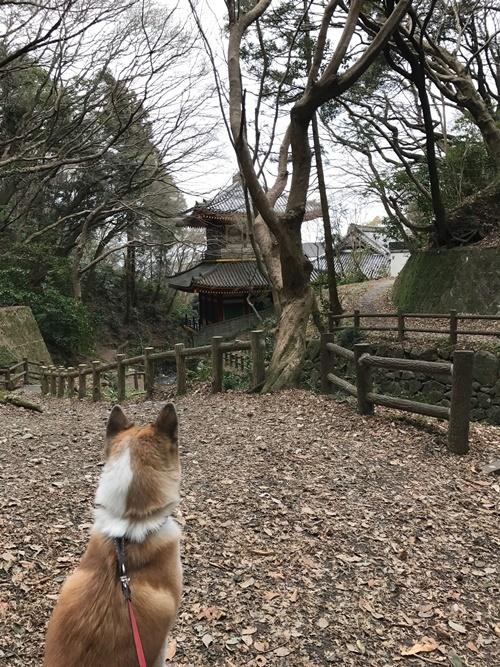 枚岡公園02
