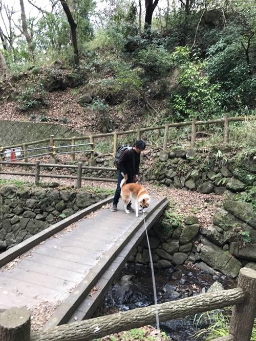 枚岡公園04