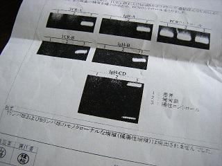 tensi7-2.jpg