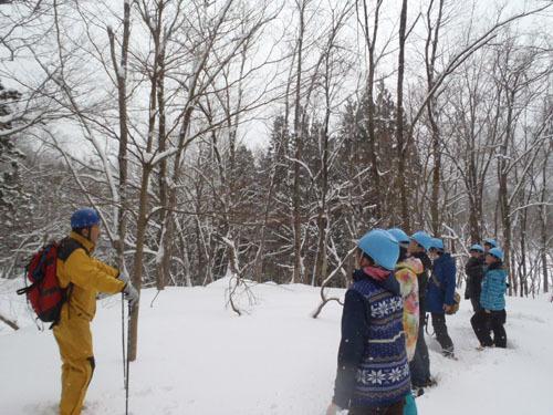 雪上観察開始