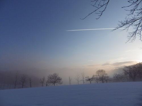 170312 霧の森林公園1