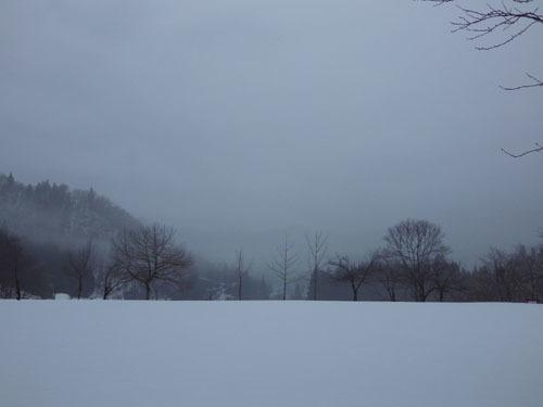 170314 霧の公園