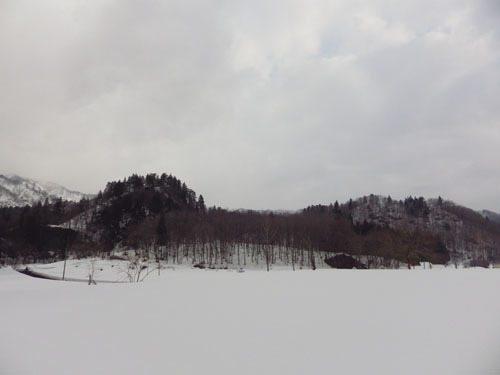 170316 森林公園