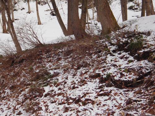 170324 降雪